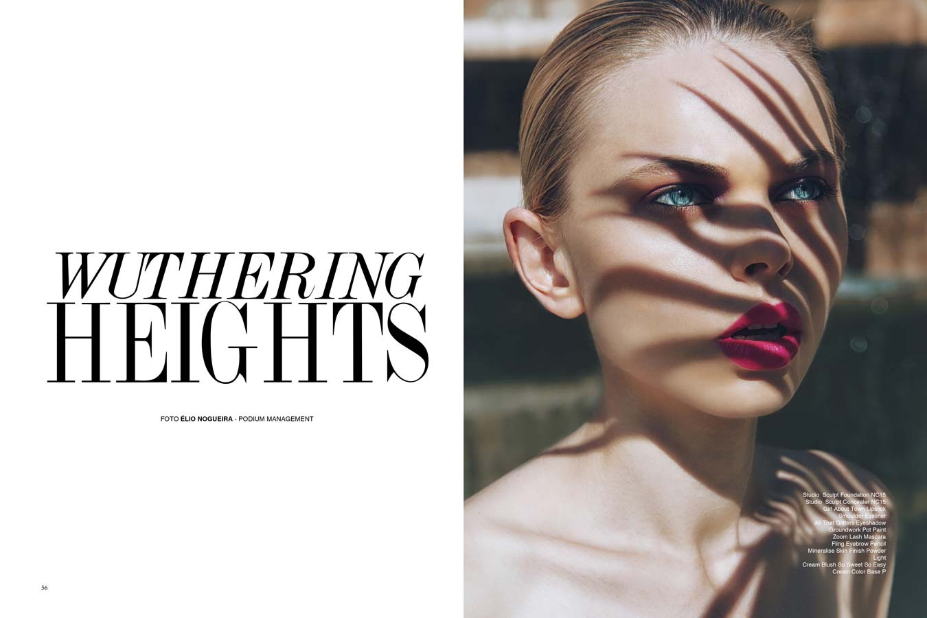 Editorial Wuthering Heights